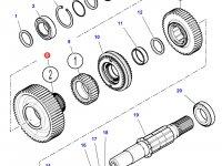 Шестерня передачи 2 КПП трактора Challenger (61 зуб) — 4302423M2