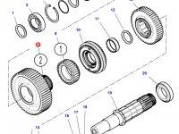 Шестерня передачи 2 КПП трактора Challenger (55 зубьев) — 4302509M2