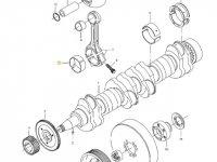 Вкладыши шатунные двигателя трактора Challenger — 836338652
